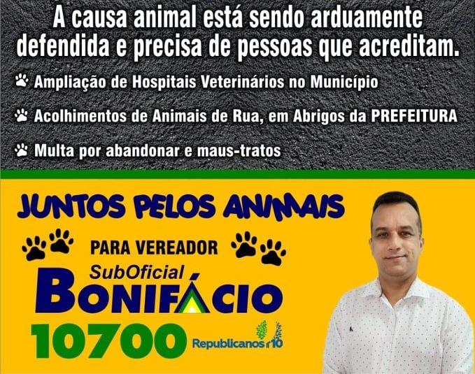 """Punição Máxima e Multa para Maus-Tratos contra Cães e Gatos. LEI 14.061 """""""" Lei Sanção"""""""""""